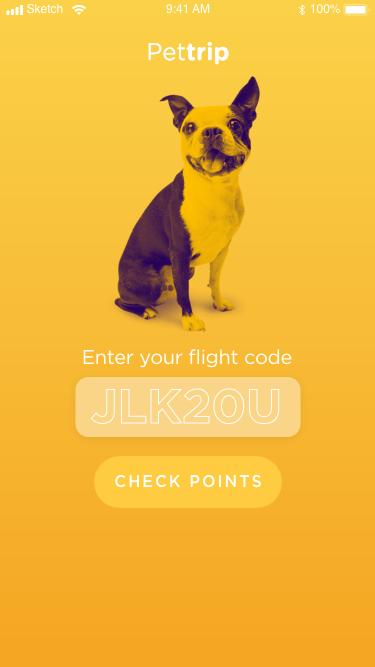 FLIGHT-CODE
