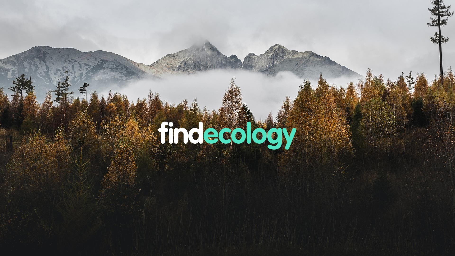 finde_mensajes_c